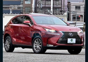 2014 LEXUS NX NX300H I PACKAGE
